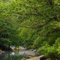 scenic stream chuck