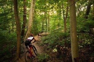 Biking the Upper Trails