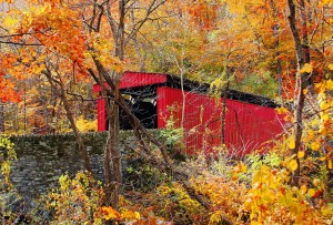 Red-Covered Bridge by Amy Tassone Knupp